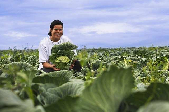 Campanha internacional valoriza mulheres rurais