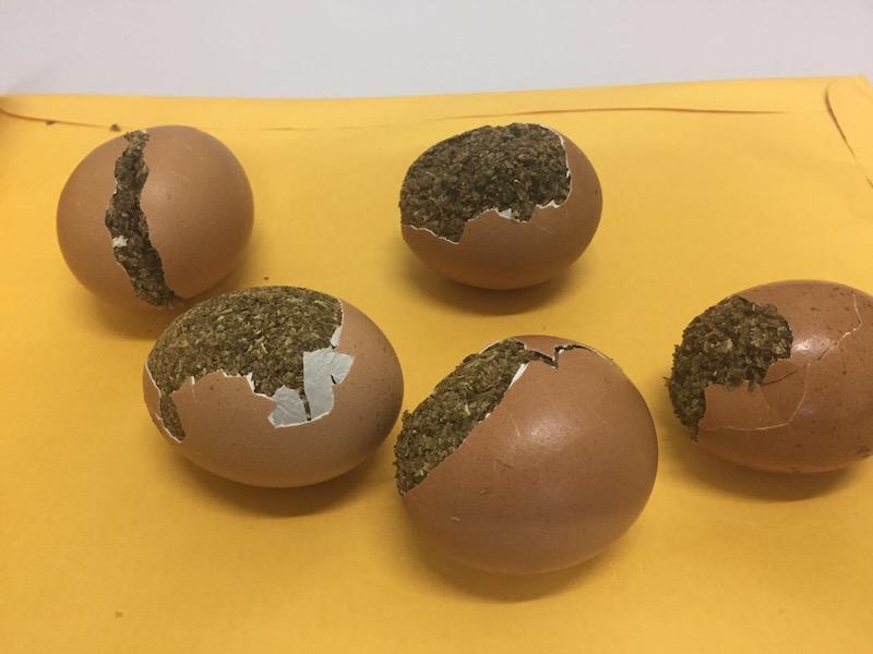 Preso homem que tentou entrar na UPP com drogas escondidas em ovos