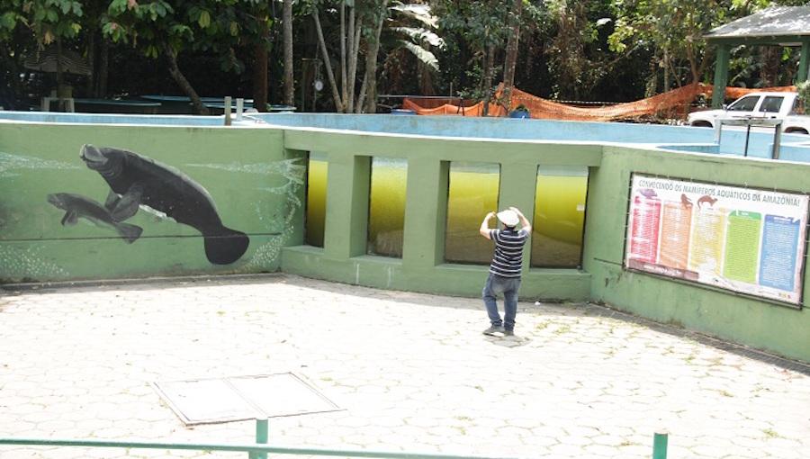 Inpa realiza obra de implantação do sistema de tratamento de água dos tanques dos peixes-bois